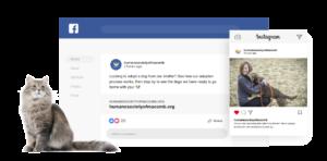 Human Society of Macomb Social media posts
